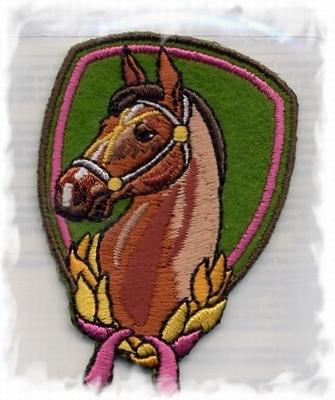 Lief - Paard