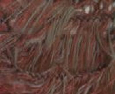 Plume multicolor - donker grijs/bordeaux
