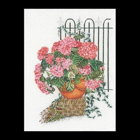 Hortensia rose  45 x 60 cm