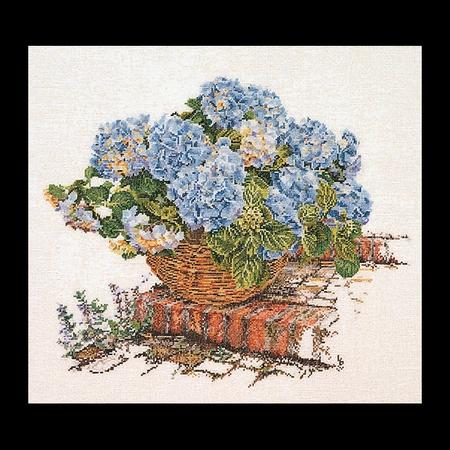 Hortensia - blauw  44 x 39 cm
