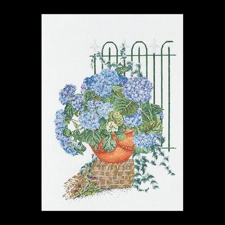 Hortensia blauw  45 x 60 cm