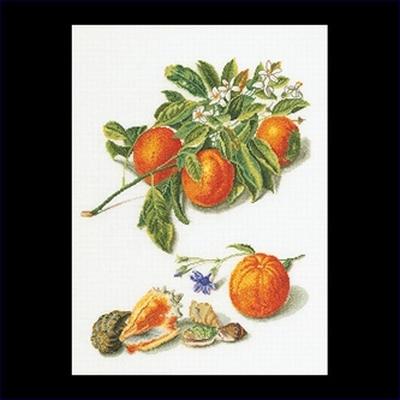 Fruitportret antiek 1  35 x 45 cm
