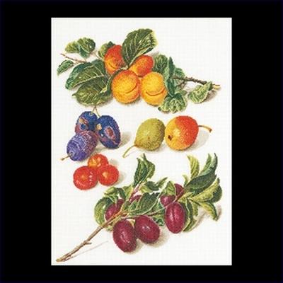 Fruitportret antiek 2  35 x 45 cm