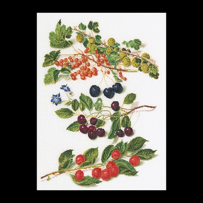 Fruitportret antiek 3  35 x 45 cm
