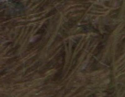Plume - zwart