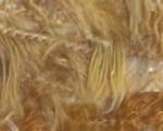 Plume multicolor - licht bruin/zand-bruin