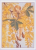 Flower Fairies - The Laburnum Fairy 12,5 x 17,5 cm