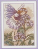 Flower Fairies - The Heliotrope Fairy 12,5 x 17,5 cm