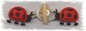 Houtje-touwtje lieveheersbeestje