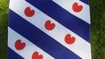 Zakdoek - Friese vlag ca. 55 x 55 cm