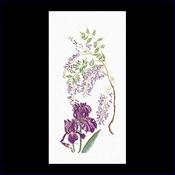 Blauwe regen - iris 33 x 65 cm