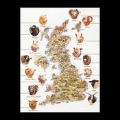 Kaart Engeland (schapen) 65 x 85 cm