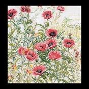 Papaver rose 45 x 47 cm