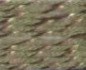 Atlantic - olijf-groen