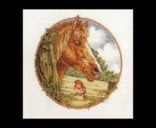 Buitenleven - Paard 31 x 31 cm