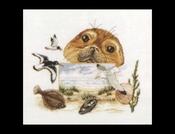 Flora & Fauna - Zeehond 39 x 35 cm