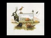 Flora & Fauna - Weidevogels 39 x 35 cm